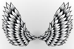 Ζευγάρι των φτερών αγγέλου διάδοσης έξω ελέγξτε την εικόνα σχεδίου η παρόμοια δερματοστιξία χαρτοφυλακίων μου απεικόνιση αποθεμάτων