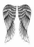 Ζευγάρι των φτερών ελεύθερη απεικόνιση δικαιώματος