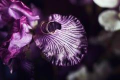 Ζευγάρι των χρυσών γαμήλιων δαχτυλιδιών στις όμορφες πορφυρές ορχιδέες πετάλων, Στοκ φωτογραφίες με δικαίωμα ελεύθερης χρήσης
