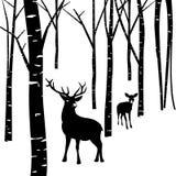 Ζεύγη των ελαφιών και του δάσους Στοκ Φωτογραφίες