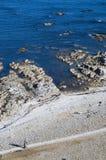 ζεύγος ακτών Στοκ φωτογραφία με δικαίωμα ελεύθερης χρήσης