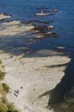 ζεύγος ακτών Στοκ Εικόνες