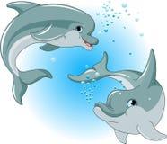 Ζεύγος δελφινιών απεικόνιση αποθεμάτων