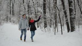 Ζεύγος ερωτευμένο σε ένα χιονώδες δάσος φιλμ μικρού μήκους