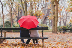 Ζεύγος κάτω από την ομπρέλα στο πάρκο φθινοπώρου, έννοια αγάπης Στοκ Φωτογραφία