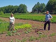 Ζεύγος 2 κηπουρών Στοκ Φωτογραφία