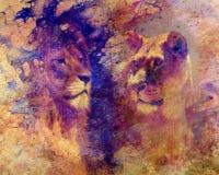 Ζεύγος λιονταριών - λιοντάρι και λιονταρίνα, δομημένο στο περίληψη υπόβαθρο Στοκ Φωτογραφίες