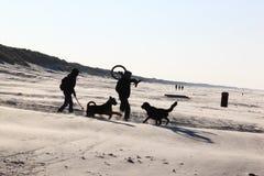 Ζεύγος με τα σκυλιά στο νησί Ameland, Ολλανδία Στοκ Φωτογραφίες