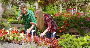 Ζεύγος που έχει την επιχείρηση του floral κήπου φιλμ μικρού μήκους