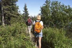 Ζεύγος που περπατά κατά μήκος του ίχνους στο δάσος στοκ εικόνα με δικαίωμα ελεύθερης χρήσης