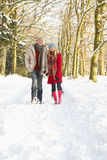 Ζεύγος που περπατά μέσω της χιονώδους δασώδους περιοχής στοκ εικόνα με δικαίωμα ελεύθερης χρήσης