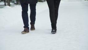 Ζεύγος που περπατά στην πορεία χιονιού στο πάρκο απόθεμα βίντεο