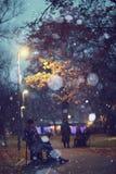 Ζεύγος που περπατά στο χειμερινό πάρκο Στοκ φωτογραφία με δικαίωμα ελεύθερης χρήσης