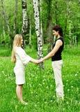 ζεύγος ρομαντικό στοκ εικόνα