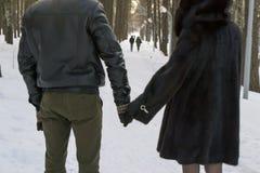 Ζεύγος στο χειμερινό πάρκο Στοκ εικόνες με δικαίωμα ελεύθερης χρήσης