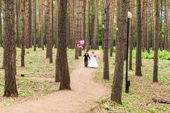 Ζεύγος της νύφης και του νεόνυμφου με τα μπαλόνια Στοκ Εικόνες