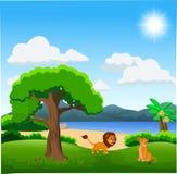 Ζεύγος των κινούμενων σχεδίων λιονταριών στο όμορφο τοπίο απεικόνιση αποθεμάτων
