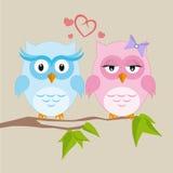 Ζεύγος των κουκουβαγιών ερωτευμένων ελεύθερη απεικόνιση δικαιώματος