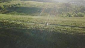 Ζεύγος των νέων που περπατούν το θερινό βράδυ ηλιοβασιλέματος κατά την εναέρια άποψη τομέων φιλμ μικρού μήκους