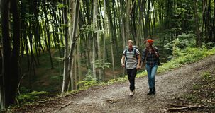 Ζεύγος Backpacked που περπατά στο δάσος απόθεμα βίντεο