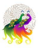 ζεύγος peacock Στοκ φωτογραφία με δικαίωμα ελεύθερης χρήσης