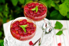 Ζελατίνα κρασιού επιδορπίων σμέουρων στοκ φωτογραφίες με δικαίωμα ελεύθερης χρήσης