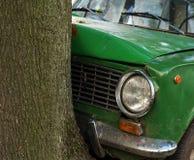 Ζημία αυτοκινήτων συντριβής στο δέντρο Στοκ φωτογραφίες με δικαίωμα ελεύθερης χρήσης