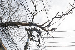 Ζημία ηλεκτρικής ενέργειας Στοκ Φωτογραφίες