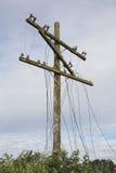 Ζημία και υποδομή θύελλας Στοκ εικόνα με δικαίωμα ελεύθερης χρήσης
