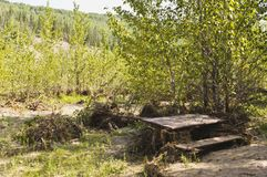 Ζημία πλημμυρών στο πάρκο Στοκ Εικόνες