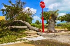 Ζημία της Irma τυφώνα Στοκ φωτογραφία με δικαίωμα ελεύθερης χρήσης