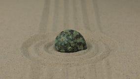 Ζουμ ενός όμορφου κοχυλιού θάλασσας που βρίσκεται σε έναν κύκλο της άμμου απόθεμα βίντεο