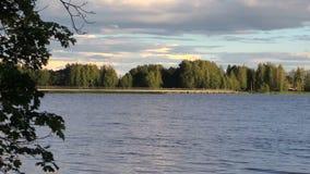 Ζουμ μέσα της εύκολα τεράστιας λίμνης και της ξύλινης γέφυρας κοντά στο δάσος απόθεμα βίντεο