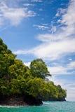 ζούγκλα ακτών κοντά στη δύ&sigma Στοκ Εικόνες