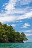 ζούγκλα ακτών κοντά στη δύ&sigma Στοκ Φωτογραφίες
