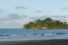 Ζούγκλα στην απόσταση στοκ εικόνα με δικαίωμα ελεύθερης χρήσης