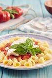 Ζυμαρικά με τη σάλτσα ντοματών και το ricotta Στοκ Εικόνα