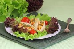 Ζυμαρικά με το κρέας Στοκ Εικόνες