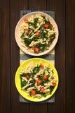 Ζυμαρικά με Chard και την ντομάτα Στοκ φωτογραφία με δικαίωμα ελεύθερης χρήσης