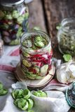 ζυμωνομμένος veggies Στοκ Φωτογραφίες