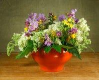 1 ζωή ακόμα Ανθοδέσμη των λουλουδιών λιβαδιών στα πορτοκαλιά δοχεία Στοκ Εικόνες