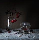 1 ζωή ακόμα κλάδοι viburnum με τα μούρα και χιόνι σε ένα διαφανές βάζο, teapot γυαλιού στον ξύλινο πίνακα Στοκ Εικόνα