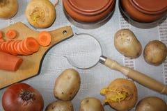 1 ζωή ακόμα Συγκομιδή των φρέσκων λαχανικών ποικιλίας Στοκ Εικόνες