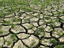 Ζωή εναντίον του θανάτου - υπερθέρμανση του πλανήτη στοκ φωτογραφία με δικαίωμα ελεύθερης χρήσης