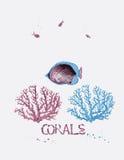 Ζωή κάτω από τη θάλασσα - τροπικά νερά απεικόνιση αποθεμάτων
