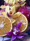 ζωή καρπού λουλουδιών α&ka Στοκ Εικόνες