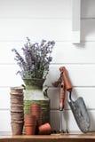 ζωή κηπουρικής ακόμα Στοκ Φωτογραφίες
