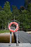 ζωή κύκλων Στοκ εικόνες με δικαίωμα ελεύθερης χρήσης