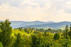 Ζωή ουκρανικά Carpathians Στοκ Εικόνες