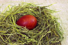 Ζωή Πάσχας ακόμα. Αυγό στο σανό Στοκ Φωτογραφία